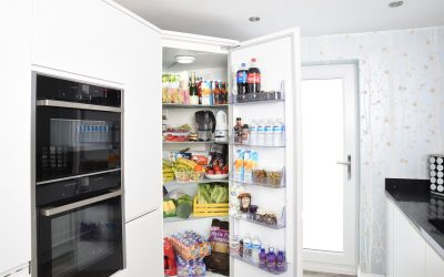 vestavná lednice