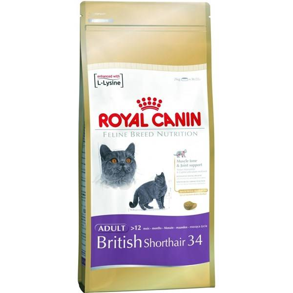 Royal Canin British Shorthair recenze