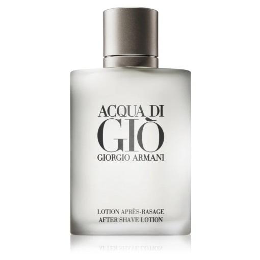 Giorgio Armani Acqua di Giò Pour Homme recenze a test